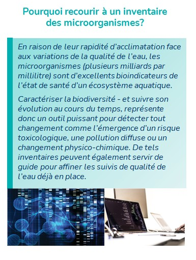 inventaire microorganismes