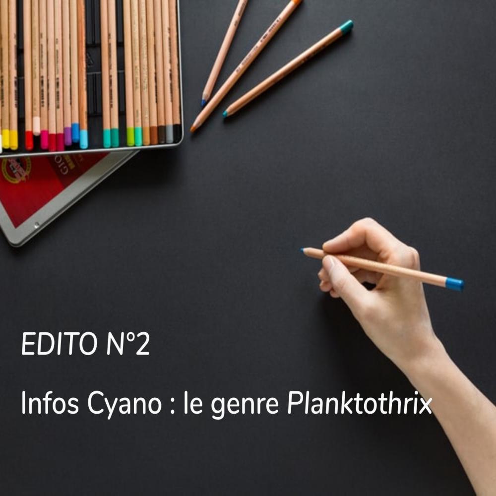 EDITO N°2 – Infos cyano : genre Planktothrix
